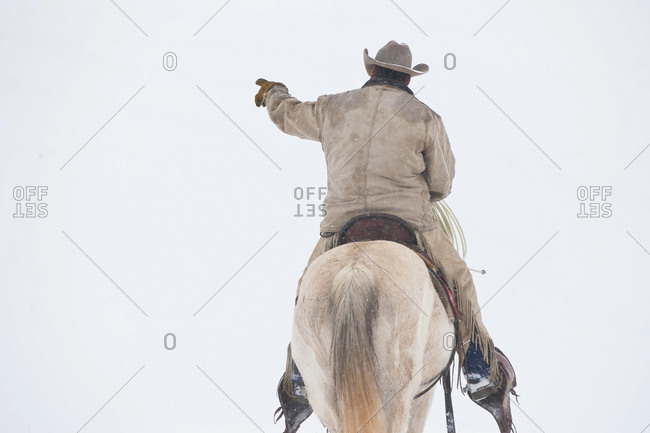 Cowboy rides his horse in snow, back view