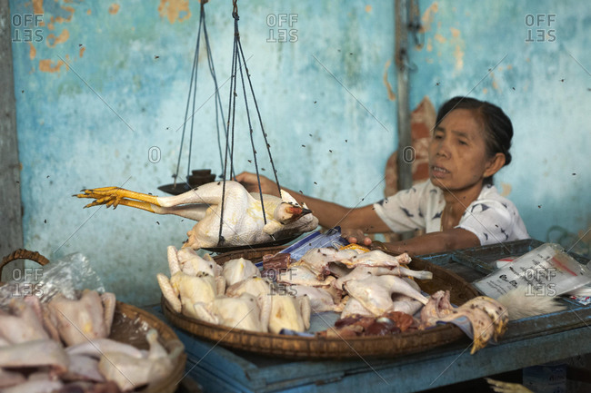 Burma - May 2011: Woman weighs poultry