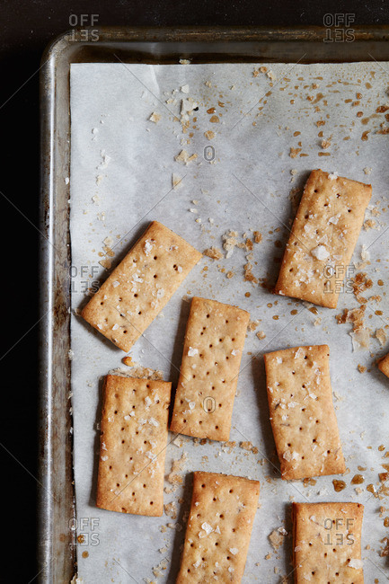 Homemade caraway seed rye crackers on a baking pan