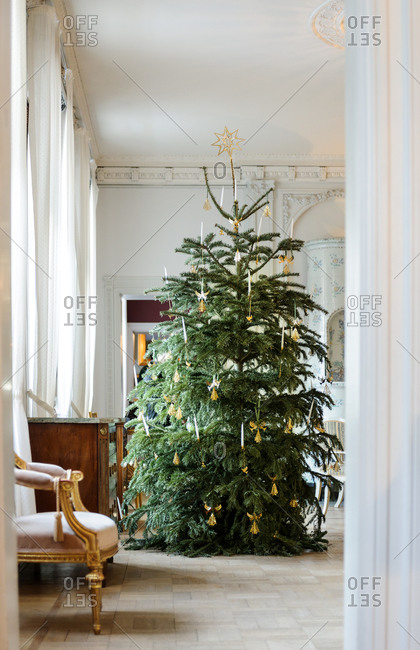 Christmas tree in a traditional living room