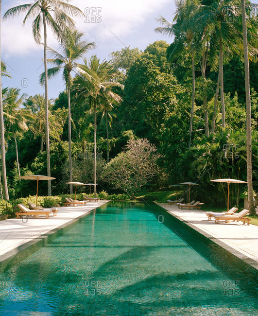 Long swimming pool with palm trees at tropical resort