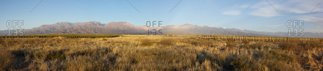 Panoramic photo of grassy field with mountain range in distance
