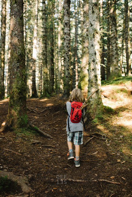 Little boy walking on a forest trail with sticks in his backpack