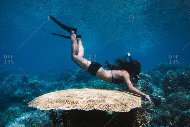 Freediver exploring a coral reef in The Philippines