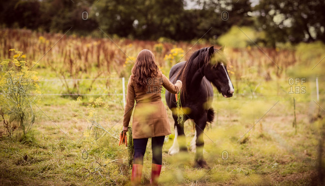 Woman feeding a horse in the countryside