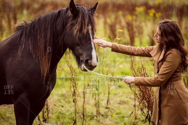 Woman feeding horse grass in the countryside