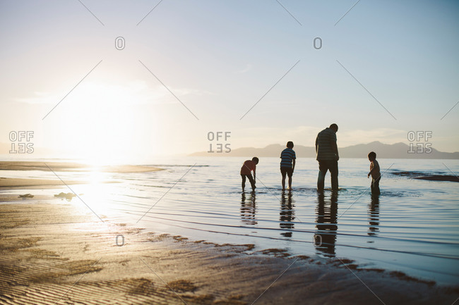 Father and three boys wading in water on beach at dusk