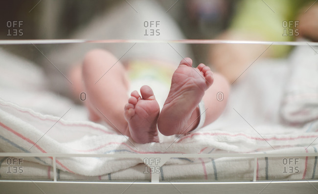 Close-up of newborn baby toes in hospital isolate