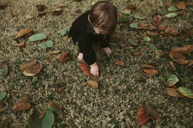 Toddler girl picking up leaves off grass