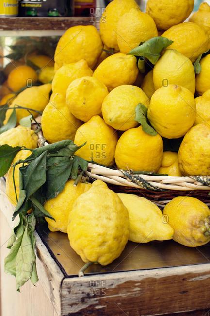 Fresh picked lemons piled high in a basket