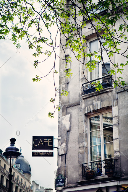 Tree branches and a cafe in a traditional Parisian building