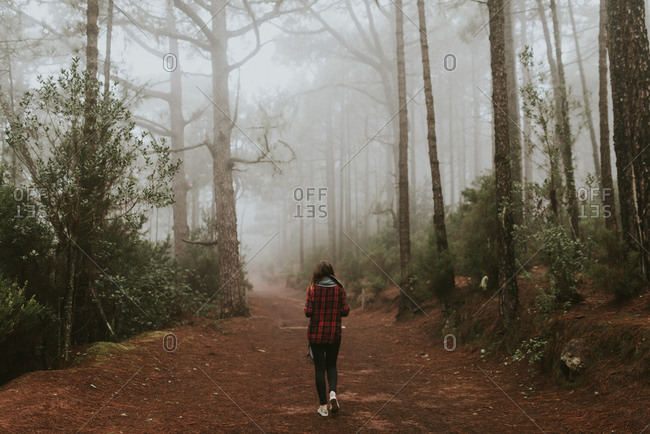 Young woman walking through misty woods