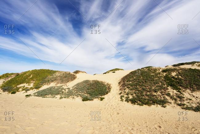 Sand dunes with vegetation under a cloud-streaked sky