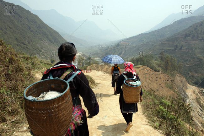 Tourists trekking with Black Hmong guides on trails near Sapa
