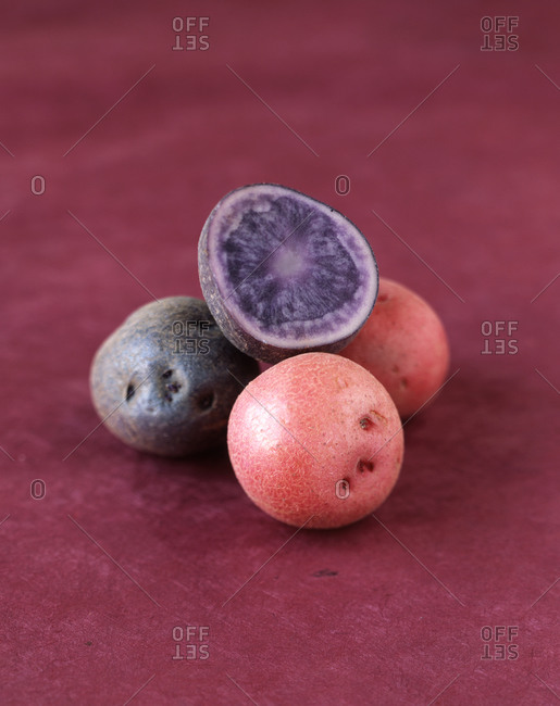 Red and purple potato varieties