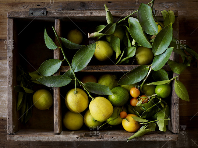 Variety of fresh-picked citrus in a vintage wooden crate