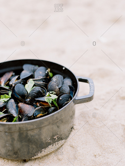 Mussels being cooked in large pot