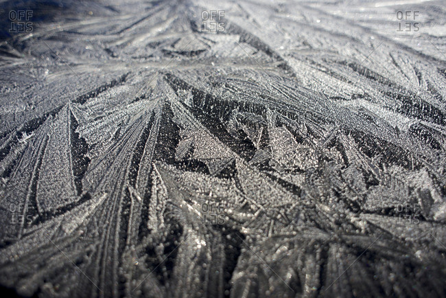Frost pattern Winter in British Columbia brings a variety of landscapes and close-ups