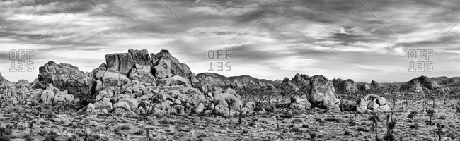 Joshua Tree National Park Panoramic view of desert, California