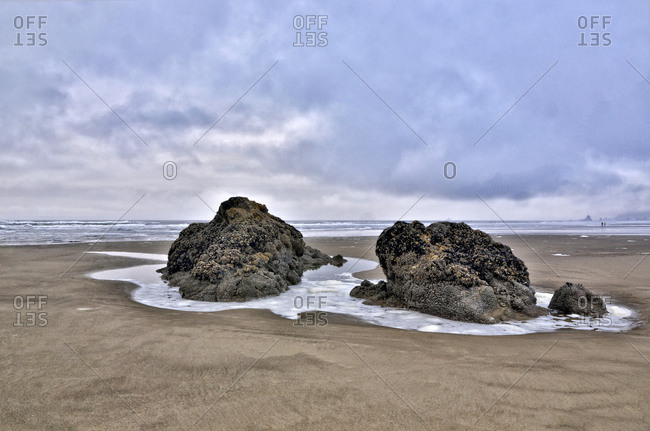 Cannon Beach Low tide exposes sea stacks, Oregon
