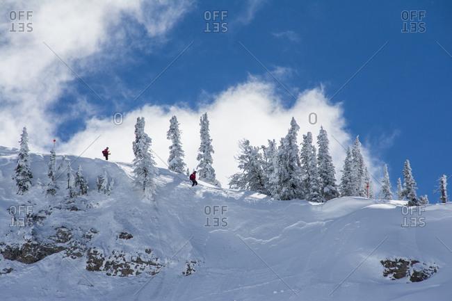 Ski cut by ski patrol triggers sluffing and loose snow avalanche Grand Targhee Ski Resort, Wyoming