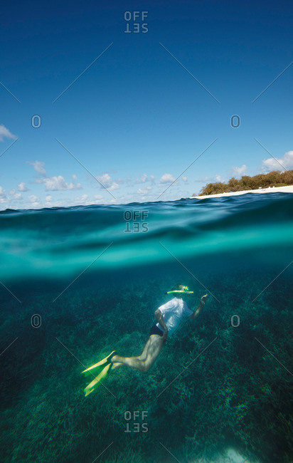Diver in front of Wilson Island, part of the Capricornia Cays National Park, Great Barrier Reef Marine Park, Queensland, Australia