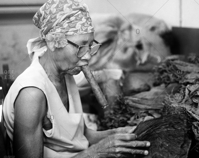 Havana, Cuba - February 25, 2007: Elderly female cigar maker smoking and handling tobacco