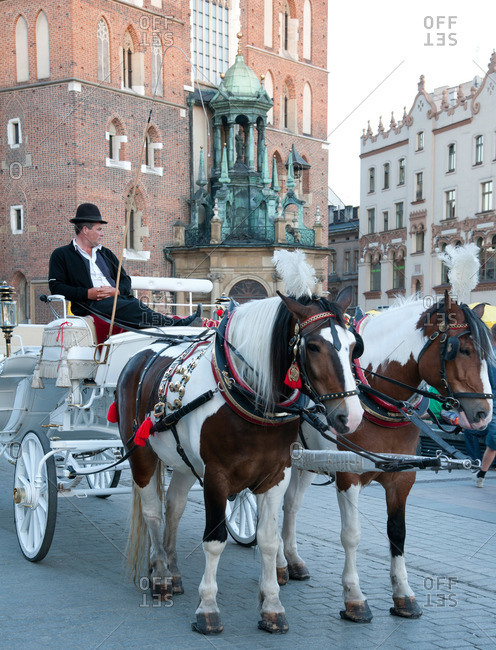Krakow, Poland - May 26, 2011: Horses tied to a carriage in front of St. Mary's Basilica in Old Town, Krakow, Poland