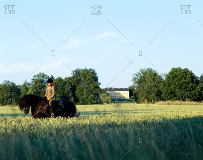 A woman riding a horse in a field