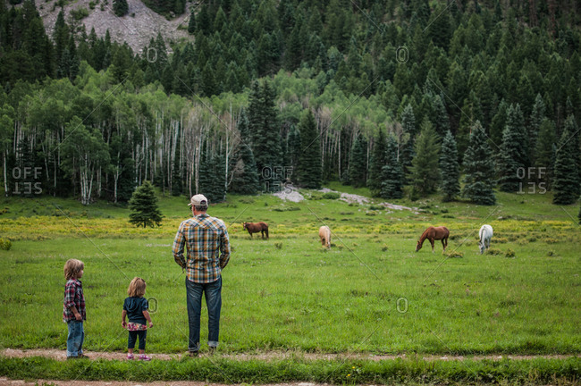 Father and children watching horses in a green mountain pasture