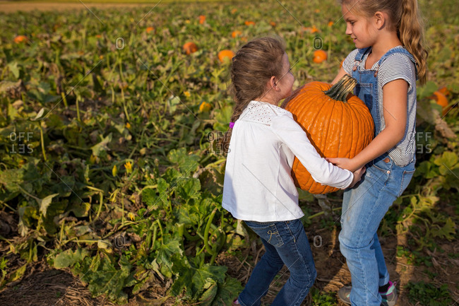 Two girls lifting a heavy pumpkin in a pumpkin patch