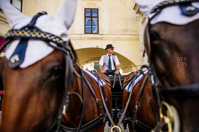 Coachman on his fiaker in the city, Vienna