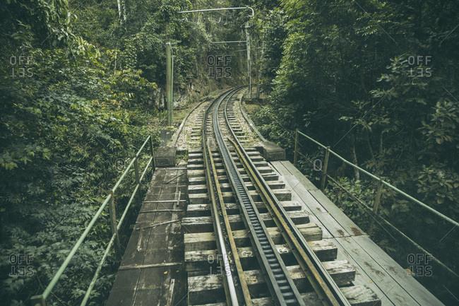 Rails of narrow gauge train in Parque Nacional da Tijuca, Rio de Janeiro