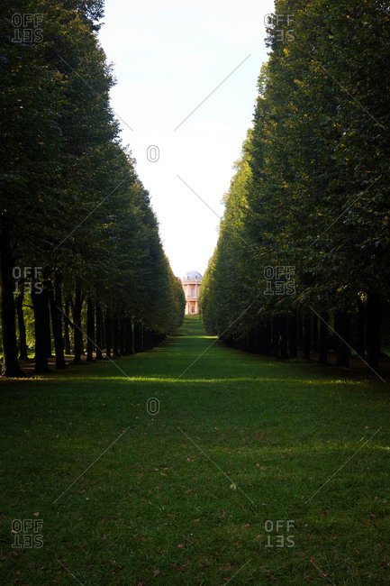 Distant view of Sanssouci Palace between a row of trees in Sanssouci Park, Potsdam, Germany