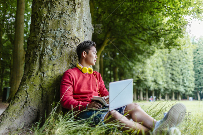 Man leaning against tree using laptop in park