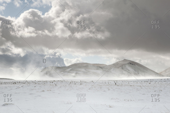 Strong wind raises a cloud of powder snow from the ground, Campo Imperatore, Abruzzo, Italy