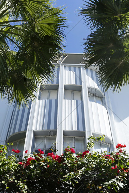 Building exterior with red flowers and palm trees in South Beach, FL