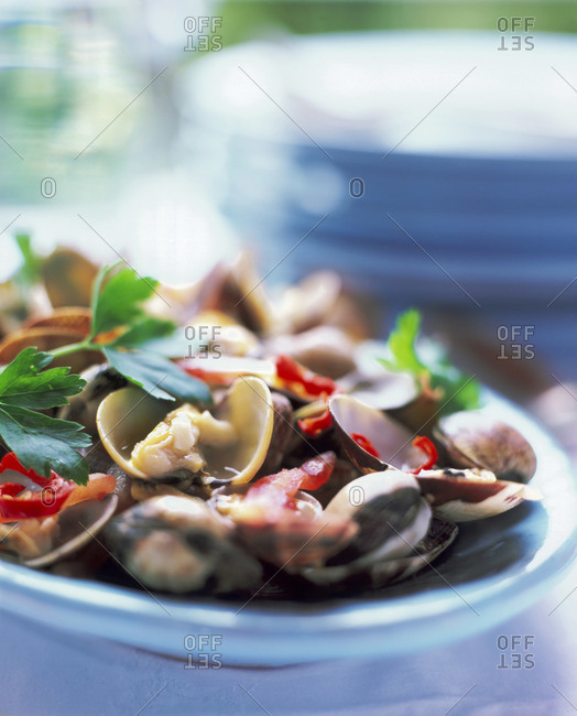 Plate of clams and herbs