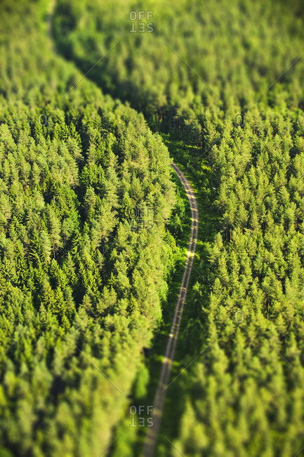 Overhead view of a road through forest
