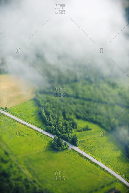 Road through forest and fields