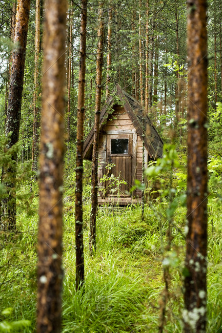 An outhouse in the forest, Finland