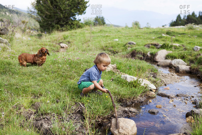 Little boy playing on a meadow at a brook