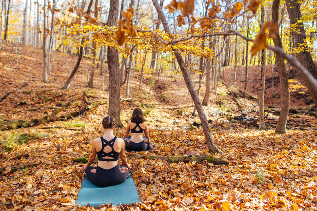 Back view of two women doing yoga in autumn woods