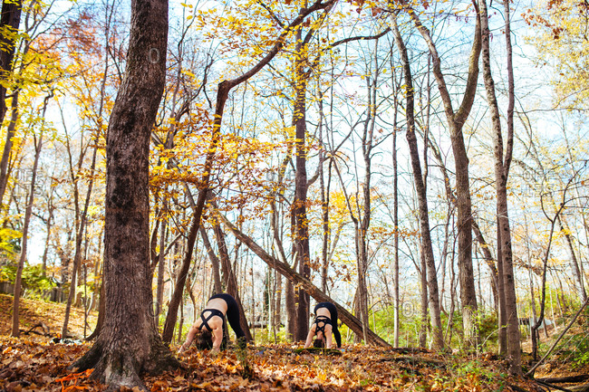 Women doing yoga in the autumn forest