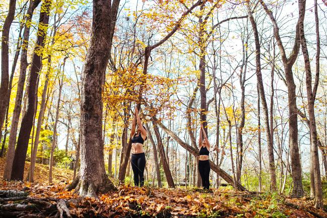 Women doing sun salutations in the woods