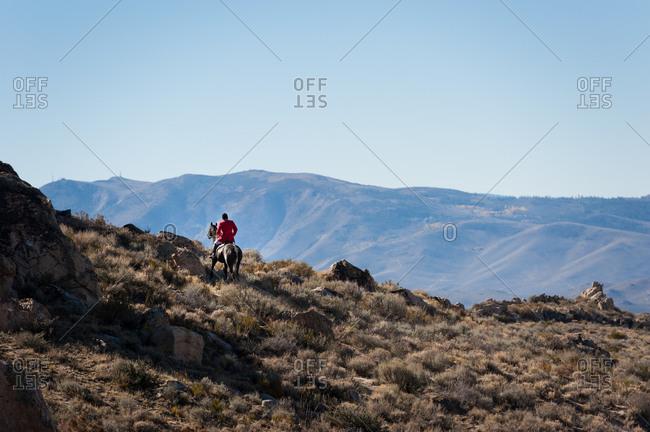Rider in red jacket on horseback in Nevada desert