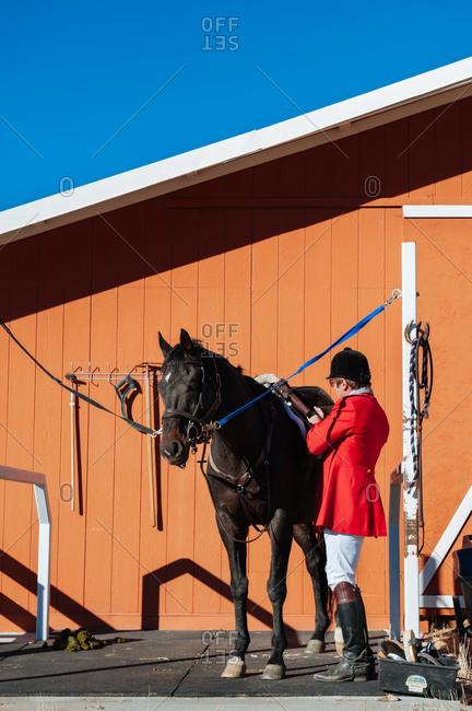 Rider preparing horse at barn for hunt