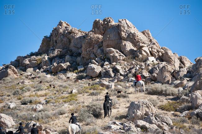 Horseback huntsmen following hounds on a desert hillside