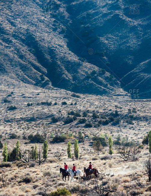 Three huntsmen in red coats during a fox hunt in desert