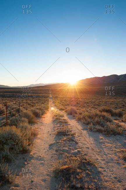 Barbed wire fence of a desert dirt road at sunset